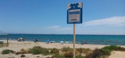 doggy beach alicante 2016-3