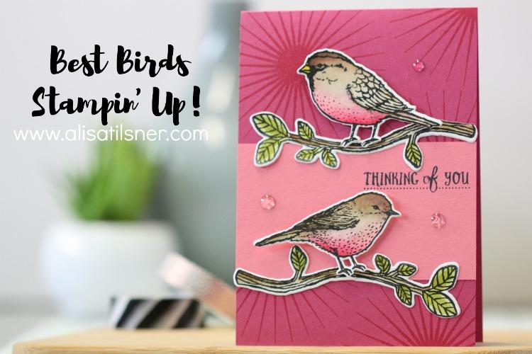Stampin' Up! Best Birds