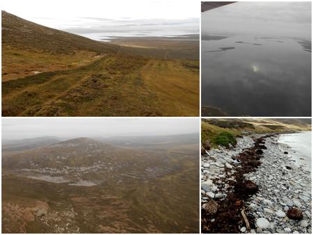 Landscapes Falklands