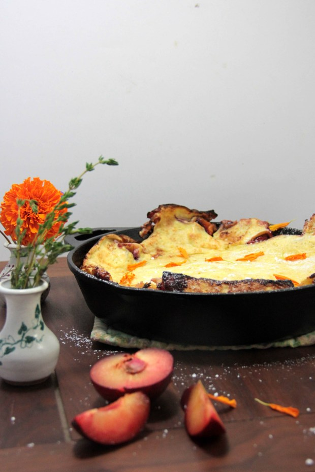 Roasted Plum Dutch Baby