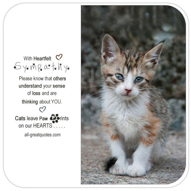 With Heartfelt Sympathy Loss Of A Cat Sympathy Cards