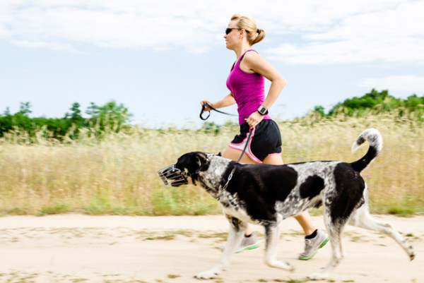 Stay Fit With Your Dog