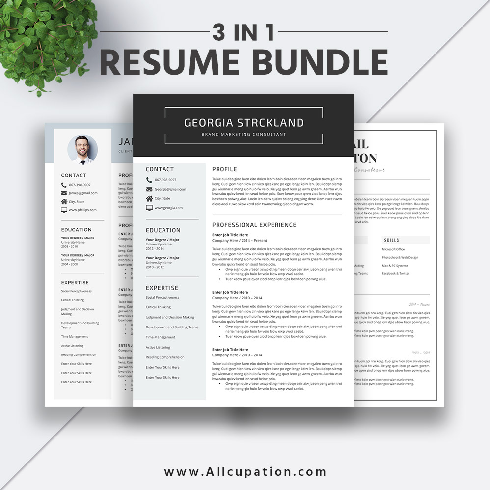 best resume templates reviews