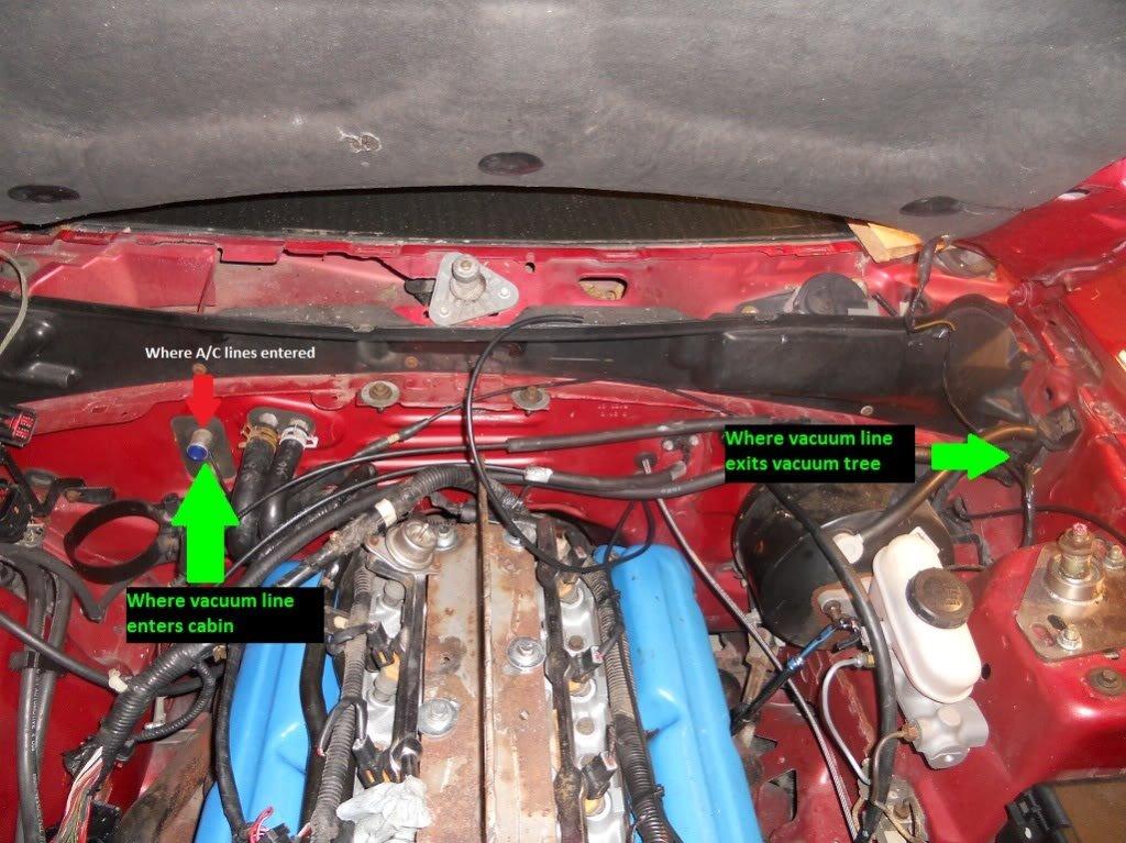 1995 Mustang gt, Fan not working! - Ford Mustang Forum