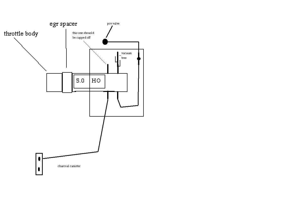 1991 mustang gt vacuum diagram ford mustang forum