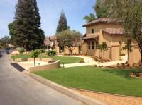 Front Yard Design in   AllGreen Grass