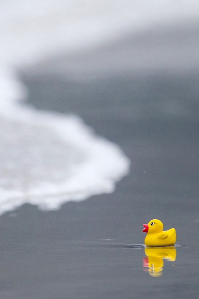3d Wallpaper Water Drop Rubber Ducky Iphone Wallpaper Hd