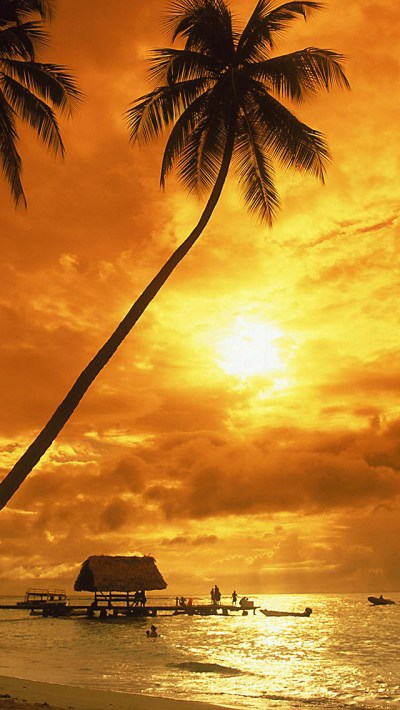 Tropical Beach Sunset iPhone Wallpaper HD