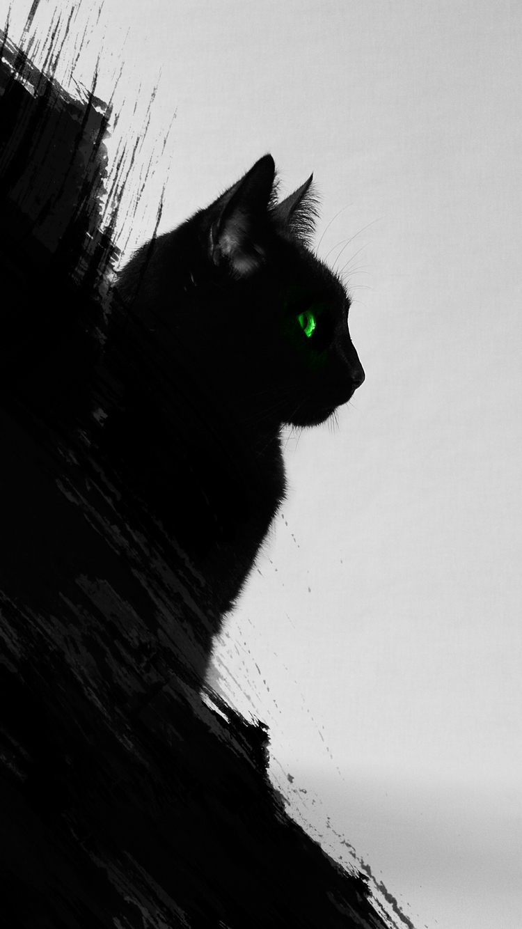 40k Quotes Wallpapers Black Cat Iphone Wallpaper Hd