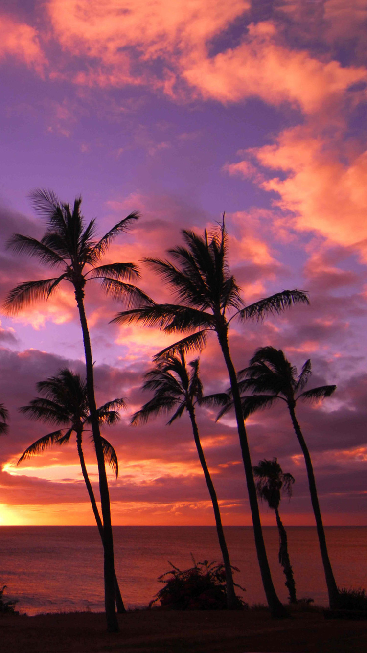 Iphone 4s New Wallpapers Hawaii Sunset Iphone Wallpaper Hd
