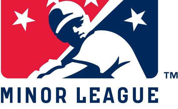 5958_minor_league__baseball-primary-2008