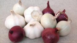 Onions-Garlic-Vegetables