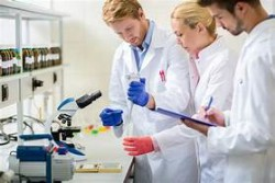 lab work image