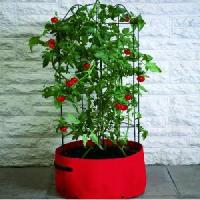 Tomato Planter from Patio Growing - Allotment Shop
