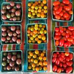 The last weeks of fresh tomatoes at a farmstand inhellip