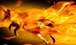make firefox secure