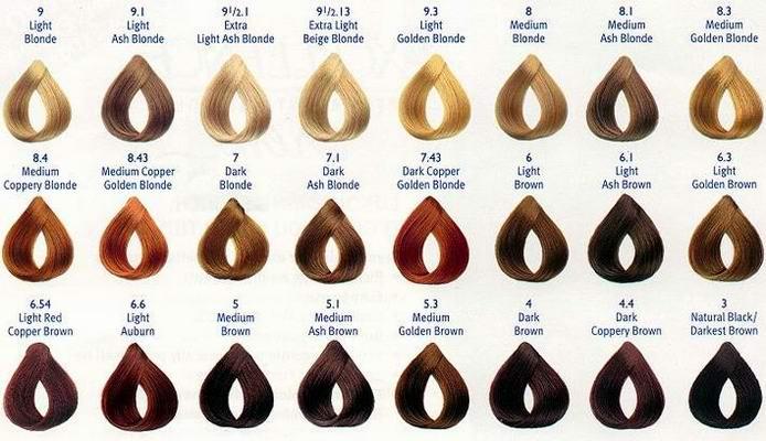 ion color brilliance chart - Heartimpulsar