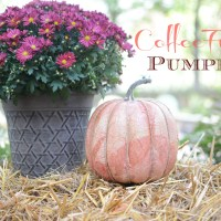 Coffee Filter Pumpkin!