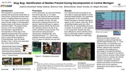 Anthropology Research Posters Anthropology Alma College - research poster