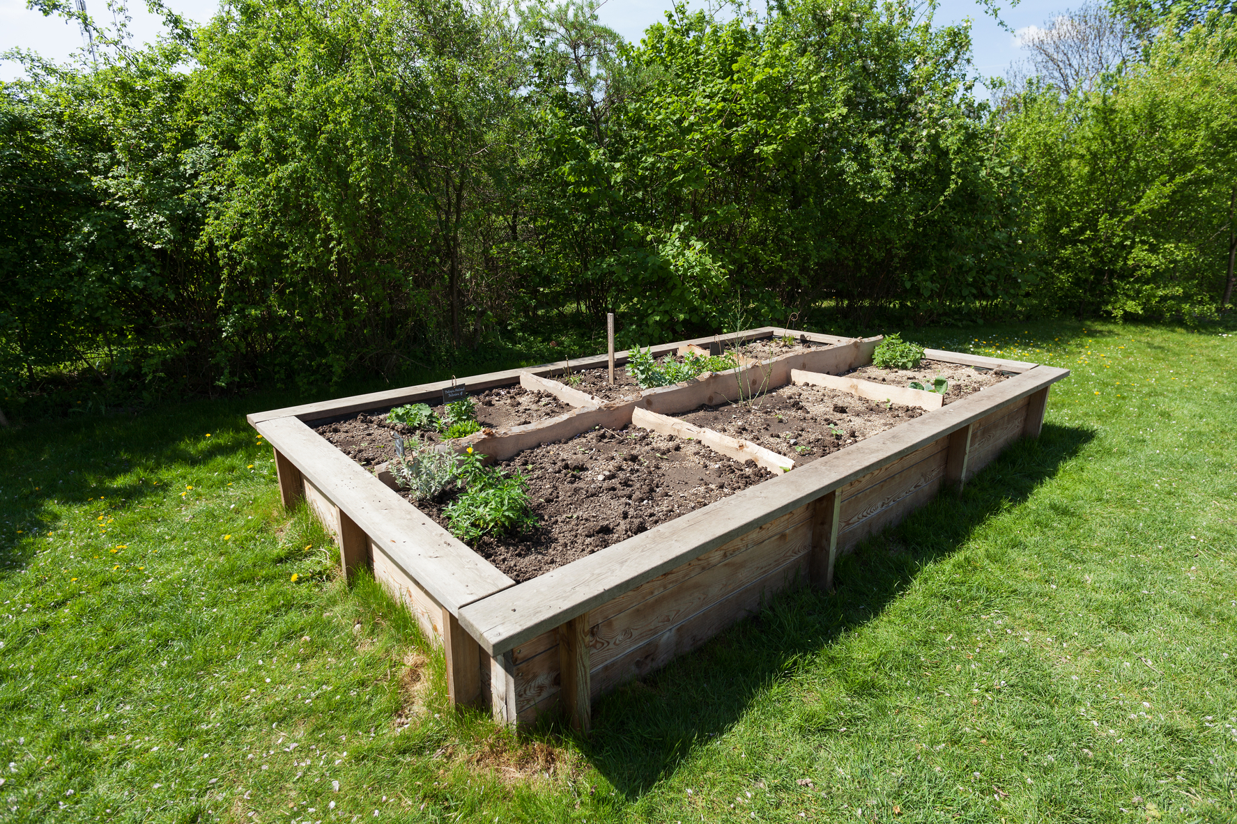 How to build raised garden beds tips for raised bed gardening the old farmer s almanac