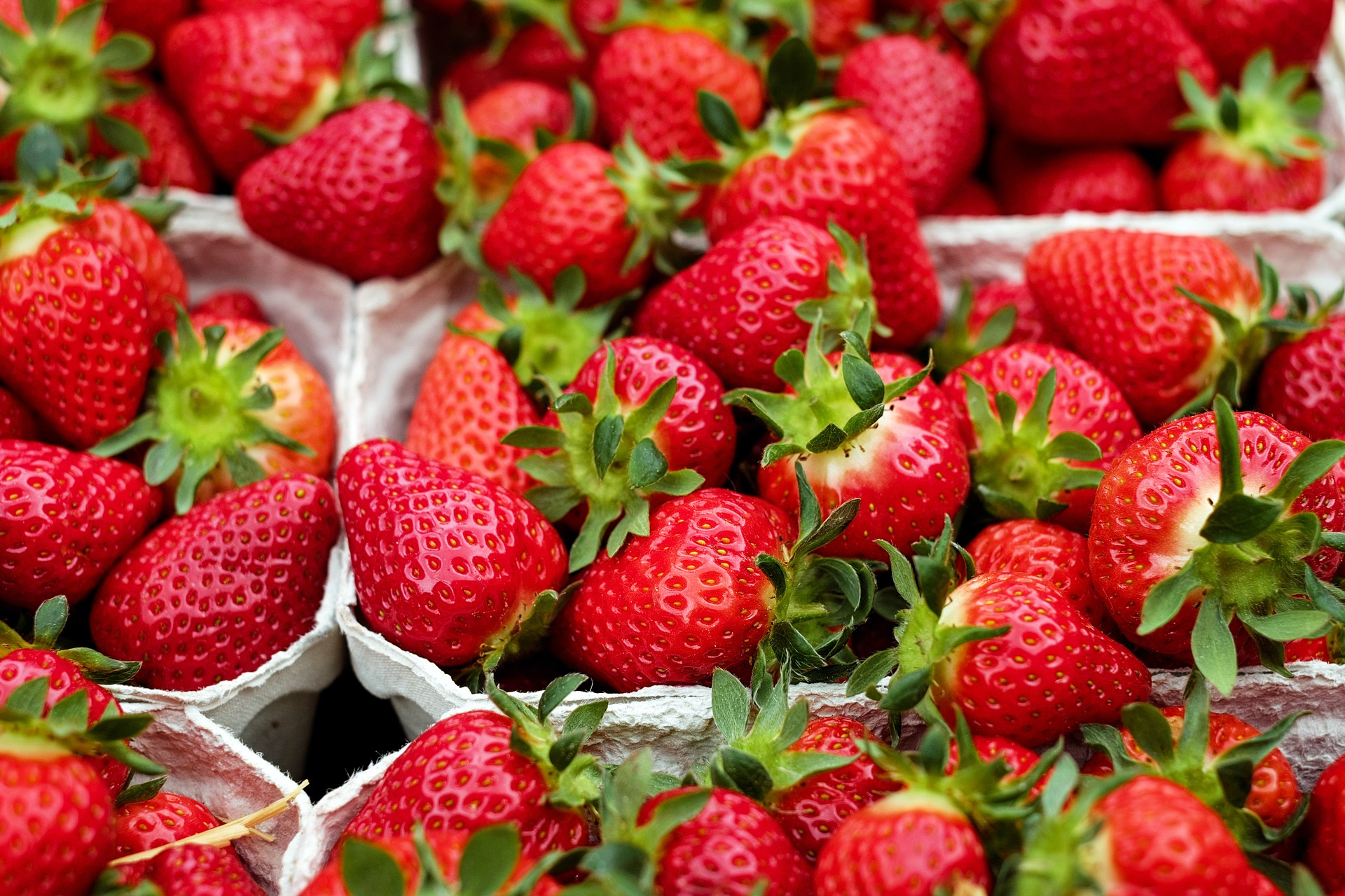 Calendar Of Holidays Everyday A Daily Listing Of Todays Holidays Checkiday Strawberries Planting Growing And Harvesting Strawberry