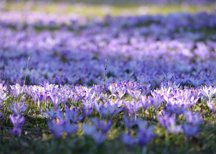 When Do The Seasons Start in 2018\u20132019? Winter Solstice, Spring