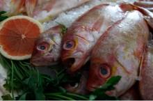 Las elevadas temperaturas pueden provocar consumir alimentos en mal estado. FOTOS: CUARTOSCURO.