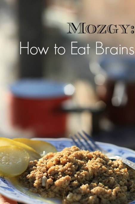 Mozgy How to Eat Brains, Slovak Style