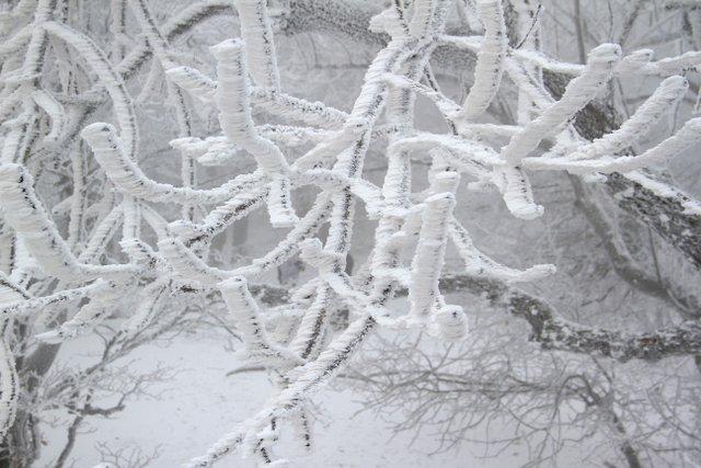 Winter in the Small Carpathians, Slovakia