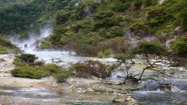 بحيرة المقلاة في Waimangu