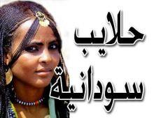 11 ألف سوداني يسجلون للانتخابات بحلايب