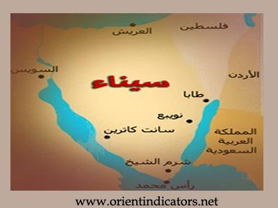 دكتور مصري سيناء سودانية