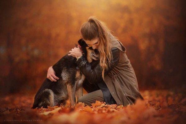 فنانة تلتقط صور مدهشة لكلاب تستمتع بفصل الخريف3