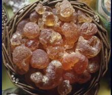 انخفاض أسعار الصمغ العربي السوداني والسكر الخام وارتفاع القطن بالأسواق العالمية