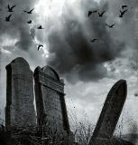بعد أن تحولت القبور إلى قصور