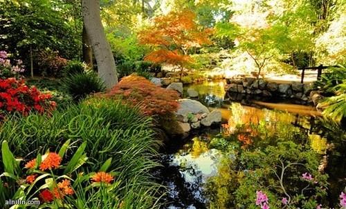 حدائق ديسكانسو  كاليفورنيا  الولايات المتحدة الأمريكية