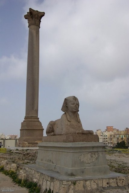 عمود السواري - آخر الاثار الباقية من معبد السيرابيوم أقامه بوستوموس ويرجع تاريخ هذا العمود إلى القرن الثالث الميلادى