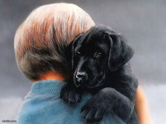 صورة لكلب وطفل - علاقة وطيدة منذ الصغر