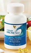forever-artic-sea