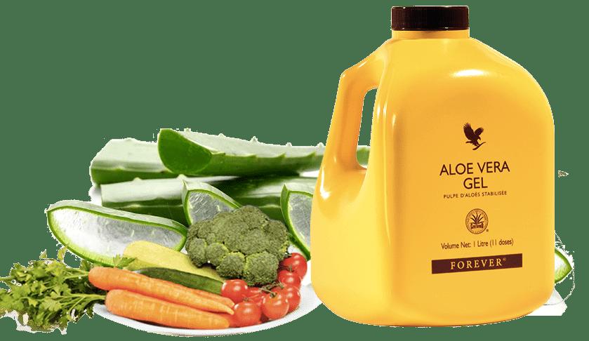 Aloe vera pour les chevaux aloevera maroc - Culture de l aloe vera ...