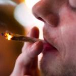 121120025003-sabet-marijuana--story-top