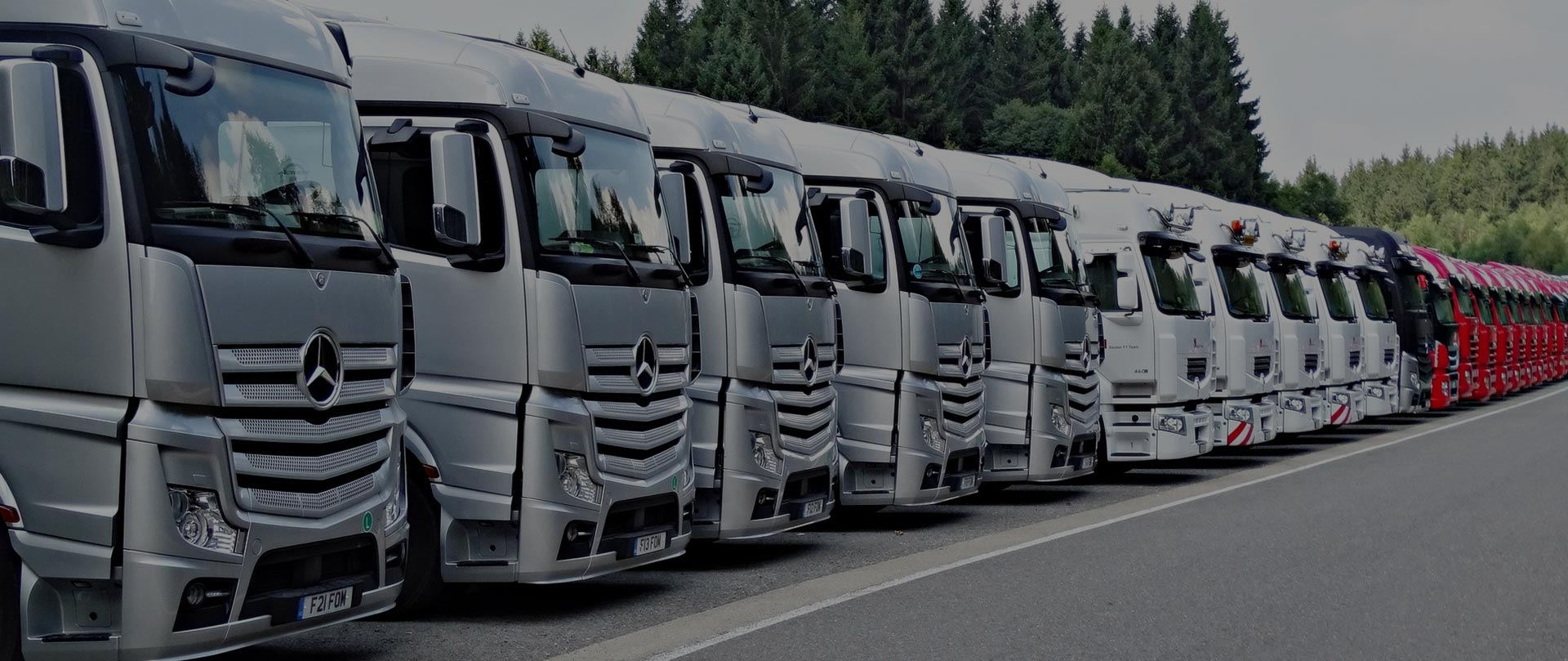 Logistics and transportation companies in Oman