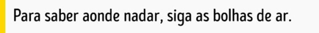 carro_afundar_6