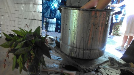 Indigo Plant Uses