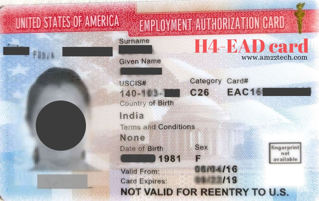 H4 EAD Documents, Sample new Application and Renewals - AM22 Tech - sample employment authorization form
