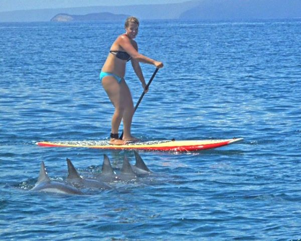 Paddle of a Lifetime
