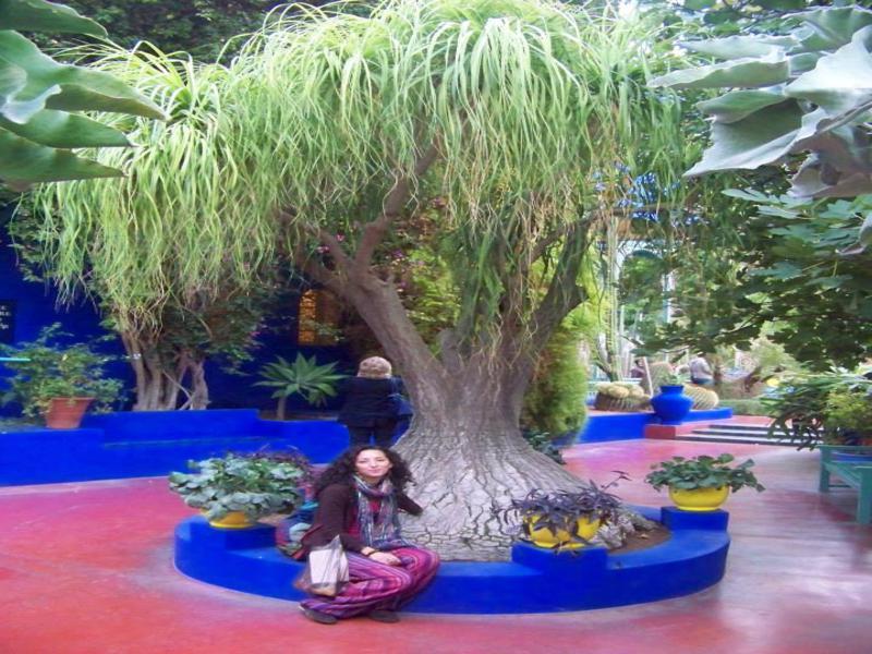 jardines-de-marrakech-viajes-amazigh-marruecos-002