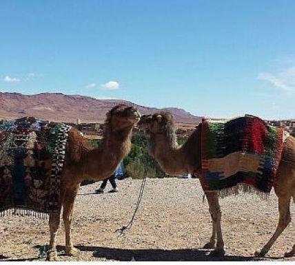 semana-santa-en-marruecos-viajes-amazigh-marruecos-0