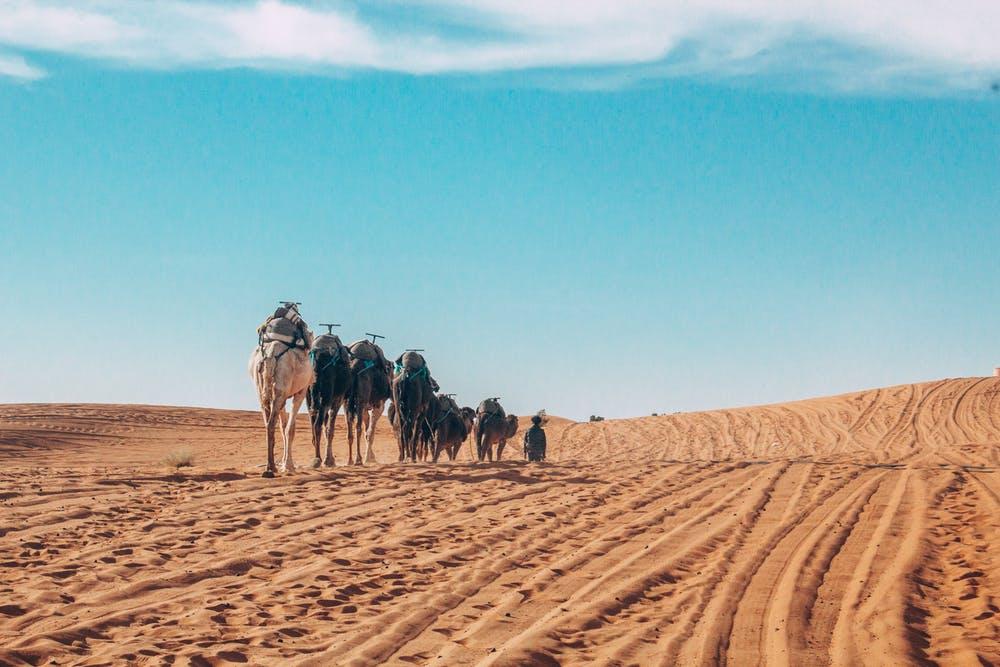viaje-de-fez-a-marrakech-por-el-desierto-viajes-amazigh-marruecos-13
