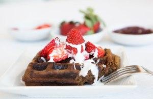 Sweet Vanilla Hemp Protein Waffles
